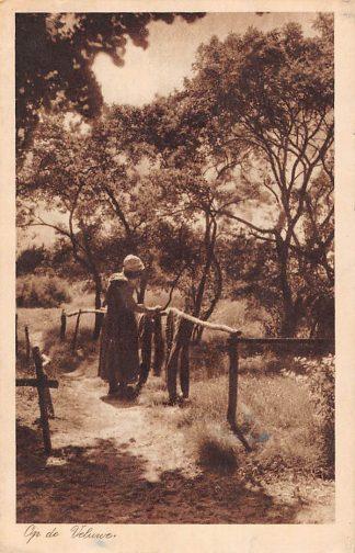 Ansichtkaart Nunspeet Op de Veluwe Boerenvrouw in klederdracht 1922 HC18819