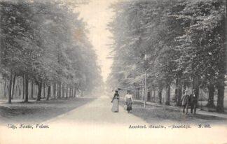Ansichtkaart Soestdijk Anmsterdamsche Straatweg Nauta N. 883 Baarn HC19289