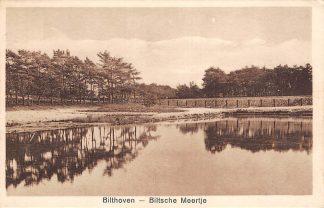 Ansichtkaart Bilthoven Biltsche Meertje 1926 HC19332