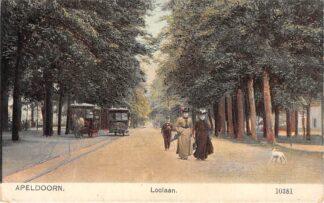 Ansichtkaart Apeldoorn Loolaan Twee paardentrams Tram HC19835