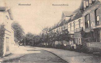 Ansichtkaart Bloemendaal Bloemendaalscheweg 1913 Haarlem HC20026