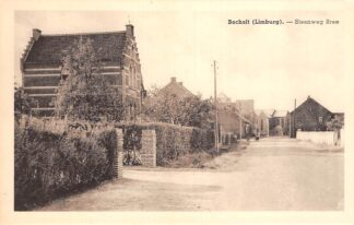 Ansichtkaart België Bocholt Limburg Steenweg Bree Europa HC20537