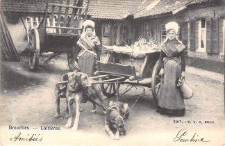 Ansichtkaart België Brussel Bruxelles Latieres Melkmeisjes met driedubbele hondenkar 1903 Europa HC20627