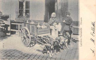Ansichtkaart België Laitiere Flamande Attrapee Vlaams melkmeisje met driedubbel hondenkar 1900 Europa HC20628