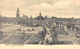 Ansichtkaart 's-Gravenhage Oud-'s-Gravenhage Panorama HC20713
