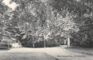 Ansichtkaart Haarlem Haarlemmerhout 1919 HC21238
