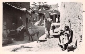 Ansichtkaart Algerije Alger Une rue du Village arabe Scenes et Types France Frankrijk Afrika HC21248