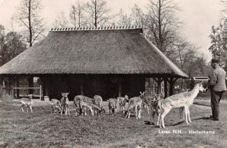 Ansichtkaart Laren (NH) Hertenkamp 1958 HC21255
