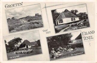 Ansichtkaart Texel Groeten van het Eiland De Koog Den Burg Bij 't Sandershuis Het schapenscheren 1937 HC21275