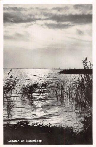 Ansichtkaart Nieuwkoop Groeten uit 1951 HC21492
