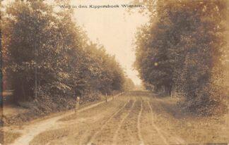 Ansichtkaart Wierden Weg in den Kippershoek Fotokaart Bij Almelo Twente HC21561