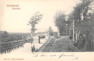 Ansichtkaart Loosduinen Houtweg s-Gravenhage HC21620