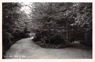 Ansichtkaart Apeldoorn Berg en Bos 1951 HC21636