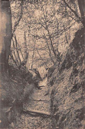Ansichtkaart Rhenen Grebbe Zwitsersche Vallei 1913 HC21648