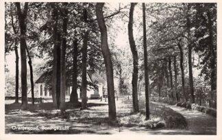 Ansichtkaart Oranjewoud Boschgezicht Heerenveen 1950 HC21705