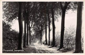 Ansichtkaart Oranjewoud Laangezicht 1950 Heerenveen HC21712