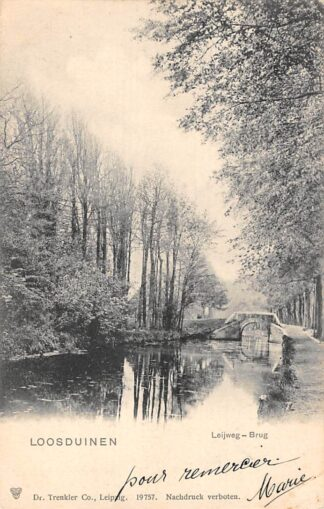 Ansichtkaart Loosduinen Leyweg - Brug 1903 's-Gravenhage HC21964