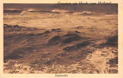 Ansichtkaart Groeten uit Hoek van Holland Zeestudie HC22011