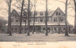 Ansichtkaart Apeldoorn Loolaan Grand Hotel-Pension de Nieuwe Kroon v/h Bloemink HC22101