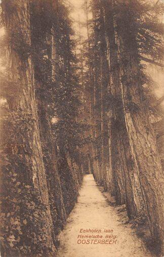 Ansichtkaart Oosterbeek bij Arnhem Eekhoorn laan en Hemelsche Berg 1923 HC22147
