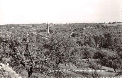 Ansichtkaart Noorbeek (Z.L.) Verscholen achter het groen Eijsden - Margraten Limburg HC22205