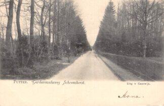 Ansichtkaart Putten Garderenscheweg Schovenhorst Paard en wagen 1903 Veluwe HC22234