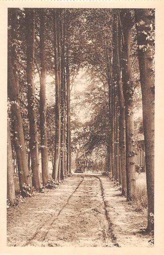 Ansichtkaart Vught Pensionaat Mariaoord Boslaan 's-Hertogenbosch HC22458