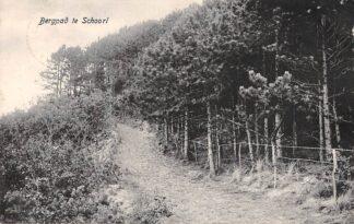 Ansichtkaart Schoorl Bergpad 1917 HC22538