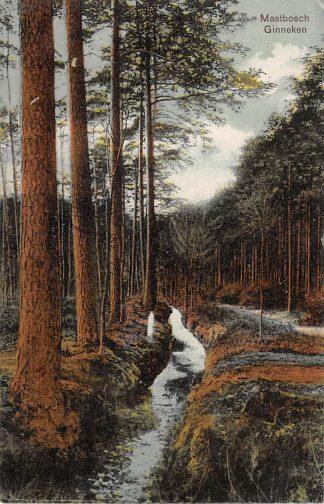 Ansichtkaart Ginneken bij Breda Mastbosch 1911 HC22770