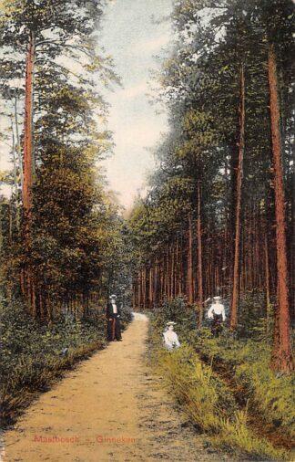 Ansichtkaart Ginneken bij Breda Mastbosch 1910 HC22774