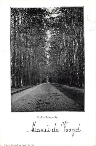 Ansichtkaart De Steeg Middachterallee 1904 Rheden HC22847