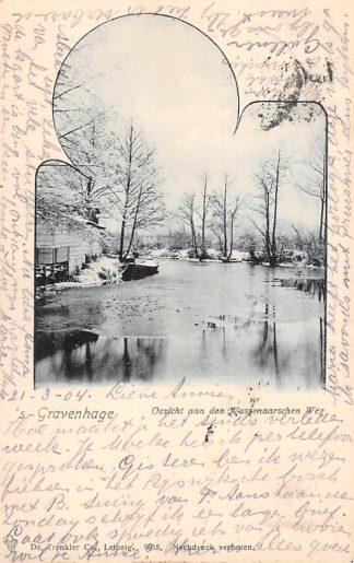 Ansichtkaart 's-Gravenhage Gezicht aan den Wassenaarschenweg in de winter met ijs en sneeuw Wassenaar 1904 HC22880