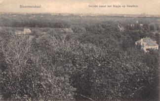 Ansichtkaart Bloemendaal Gezicht vanaf het Kopje op Haarlem HC23000