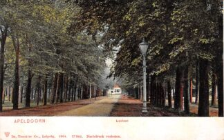 Ansichtkaart Apeldoorn Loolaan 1904 HC23049