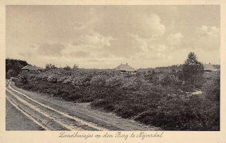 Ansichtkaart Nijverdal Landhuisjes op de Berg 1942 HC23146
