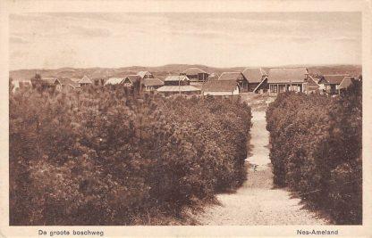 Ansichtkaart Ameland Nes De groote boschweg 1946 HC23147
