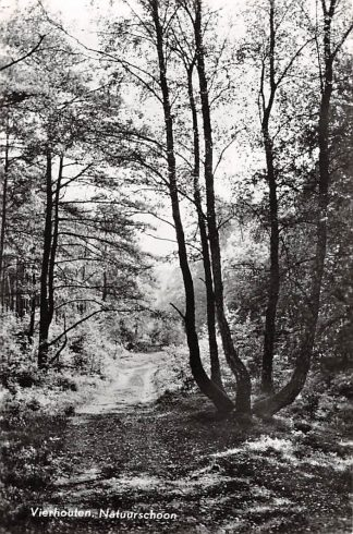 Ansichtkaart Vierhouten Natuurschoon 1968 Nunspeet Veluwe HC23249