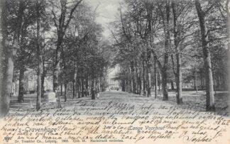 Ansichtkaart 's-Gravenhage Lange Voorhout 1905 HC23338