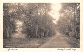 Ansichtkaart Apeldoorn Amersfoortsche weg 1916 HC23360
