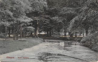 Ansichtkaart Hillegom Vijver Treslong 1913 HC23404