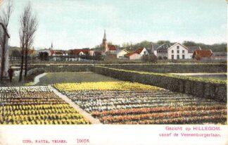 Ansichtkaart Hillegom Gezicht op Hillegom vanaf de Veenenburgerlaan Bloembollenvelden HC23406
