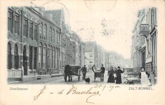 Ansichtkaart Zaltbommel Boschstraat 1900 HC23515