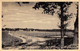 Ansichtkaart Vierhouten Plaggeweg 1951 Epe Veluwe HC23708