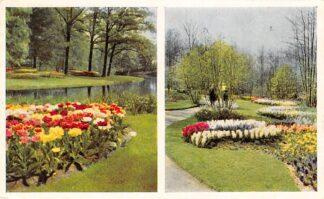 Ansichtkaart Lisse Keukenhof HC23746