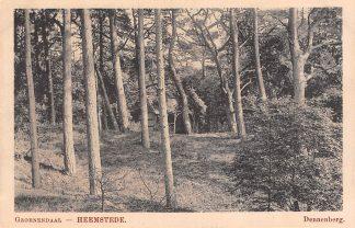 Ansichtkaart Heemstede Groenendaal Dennenberg Haarlem HC23779