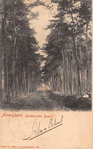 Ansichtkaart Amersfoort Lockhorster Bosch 1901 HC23863