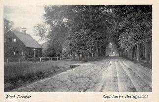 Ansichtkaart Zuidlaren Bosch gezicht Mooi Drenthe HC23992