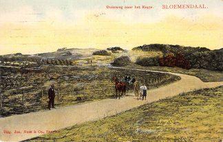 Ansichtkaart Bloemendaal Duinweg naar het Kopje Paard en wagen 1907 Tulp Haarlem HC24017