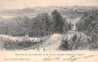 Ansichtkaart Bergen (NH) en Schoorl Panorama bij Duivelsboschje in de duinen tussen Bergen en Schoorl Kleinrondstempel Schoorldam 1906 HC24043