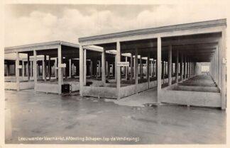Ansichtkaart Leeuwarden Leeuwarder Veemarkt Afdeeling Schapen (op de Verdieping) Markt 1929 Fotokaart HC24434